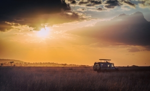 Sunset in Africa. Serengeti National Park, Tanzania (Africa)